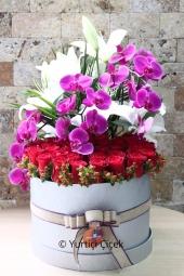 Renkli Gerberalar : 10 Adet   Gerbera buketi ile özel bir gün olmadan içinizden geldiği için sevdiklerinize hoş bir sürpriz yapacaksınız.