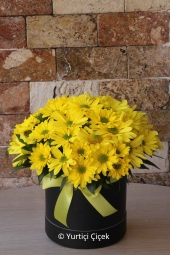 Sevdiklerinize en güzel sabah sürprizi mevsimin tüm renklerinden hazırlanan çiçek aranjmanıdır. Sevdiklerinizi mutlu etmek için sadece sipariş vermeniz yeterli. Yaklaşık Ürün Boyutu : 30 cm