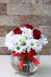 Cam Fanusta Aşkı ve Masumiyeti Anlatacak Kırmızı Güller ve Papatyalar Sevdiklerinize Kavuşmak İçin Göndermenizi Bekliyor. Yaklaşık Ürün Boyutu : 30 cm