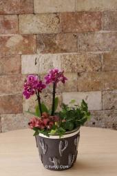 Pembe Lilyum, Pembe Gül ve Pembe Kır Çiçekleri   Onu sevmek hayattaki en güzel şey. Onu mutlu etmek ise dünyalara değişilmez. Lilyum, gül ve kır çiçeklerinden aranjman ile sevginizi göstereceksiniz.