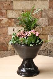Özel Vazosunda 6 Adet Kaktüsten Hazırlanan Terrarium ile Sevdiklerinize Hoş Bir Sürpriz Yapabilirsiniz. Yaklaşık Ürün Boyutu : 35 cm