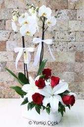 Çift dallı beyaz orkide ve yanına beyaz lilyum ile kırmızı güllerden hazırlanan aranjman ile aşkınızı capcanlı gösterin.