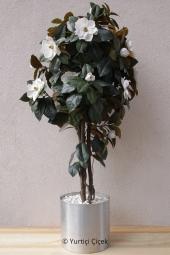 Çift Dallı Orkide   Cam vazoda nazar boncuğu, beyaz taşlar ve diğer aksesuarlarla süslenen saksı çiçeği orkide sevdiklerinize göndereceğiniz en güzel hediye olacaktır.