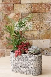 Fincan seramikte rengarenk kaktüsler Kaktüs Bakımı : Kaktüs bakımı en kolay bitkilerdendir. Yaz aylarında 2 haftada bir, kış aylarında ise ayda 1 su vermeniz yeterlidir. Yaz kış gün ışığı alan bir ortam isteyen kaktüsler çok soğuk ortamlarda bırakılmamalıdır.