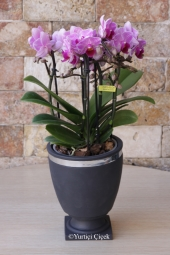 Seramik Ayakkabıda Gül ve Orkideler ile Sevdiklerinize Güzel Bir Hediye Gönderin.