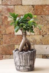 Cam vazoda 9 pembe gülden egzotik tasarımlı buket ile sevginizin ne kadar vazgeçilmez olduğunu gösterin. Yaklaşık Ürün Boyutu : 55 cm