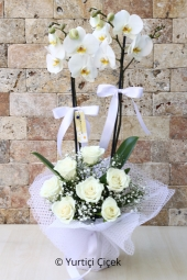 Çift Dallı Beyaz Orkide ve Beyaz Güller ile sevdiklerinize kalbinizden bir parça sunacaksınız. Yaklaşık Ürün Boyutu : 60 cm