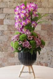 Mor çift dallı orkidenin masum güzelliği ile sevdiğinizi bugüne özel bir sürprizle mutlu etmek istemez misiniz?