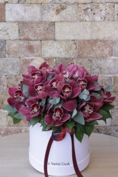 Şık ve özel tasarımlı seramikte 2 adet tek dallı mor orkide ile sevdiklerinize unutamayacakları bir çiçek gönderin.
